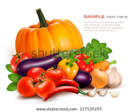 Fresh vegetables. Healthy Food. Vector illustration - stock vector