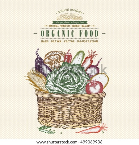 Fresh vegetables in basket, vintage organic food. Hand drawn vegetables poster and cover design. Natural farm food.