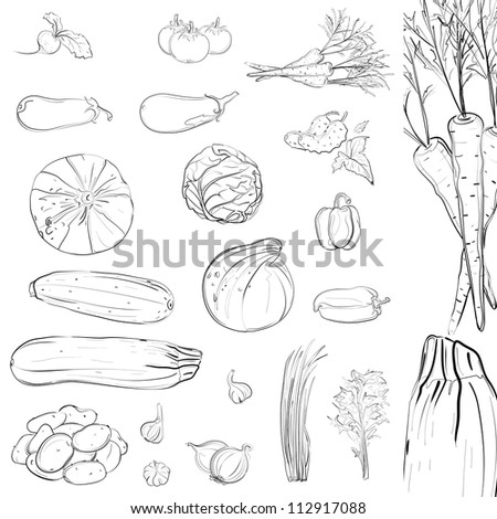 Fresh Vegetables Sketch Collection. Vector EPS8 illustration, no effects used. All items are grouped and layered separately. No filling color, use them on any background.