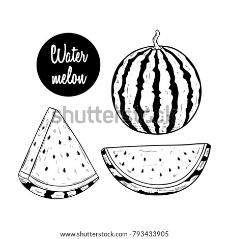 Blue Drawing Pineapple Transparent Png Clipart Free - Pineapple Drawing  Black And White , Free Transparent Clipart - ClipartKey