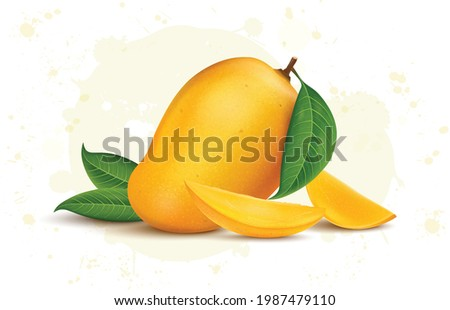 Fresh Yellow mango with mango leaves and slices vector illustration Stock photo ©