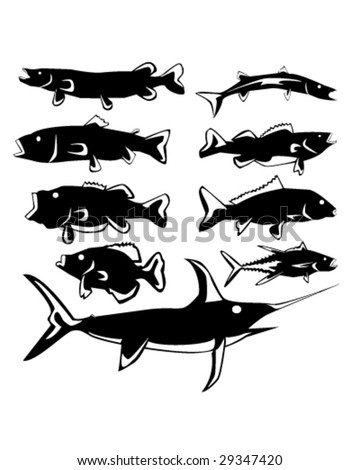 Freshwater and saltwater fish in vector silhouette with stylized illustration