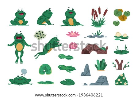 Frog. Cartoon amphibian with pond and river plants. Growth steps of life cycle. Isolated wild animals sitting or jumping. Lotus flowers and water lily leaves. Vector croaking toads set ストックフォト ©
