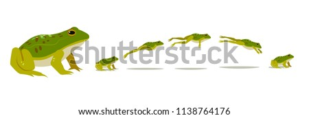 Frog jumping animation  sequence. Vector illustration.