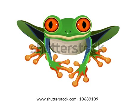 Frog  Red-eye tree isolated on a white background VECTOR (See Jpeg Also In My Portfolio)