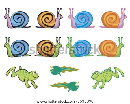 Cartoon Pics Of Frogs. stock vector : frogs, tadpoles