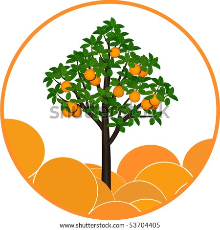 Fructifying Orange Tree On An Orange Tree Vector