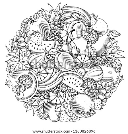 Fruit and berries round design in hand drawn doodle or engraved style. Black and white. Vector illustration.
