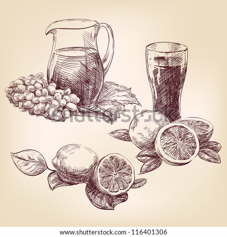 fruit collection vintage hand drawn vector illustration  isolated