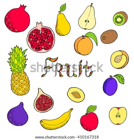 fruit food graphic art set