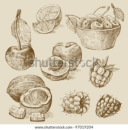 fruit - illustration - stock vector