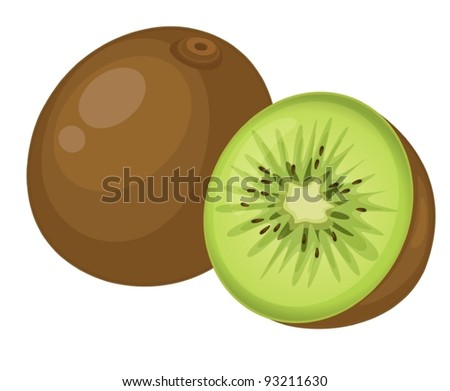 fruit illustration on white