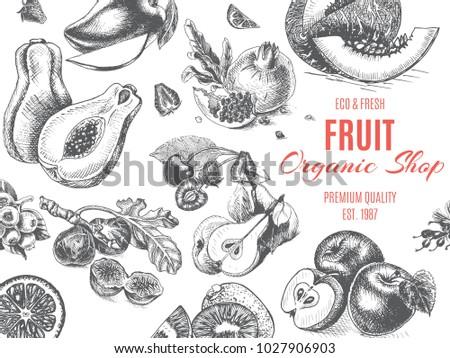 fruit organic shop banner
