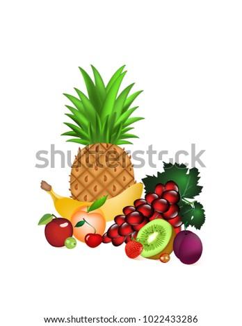fruit platter on white