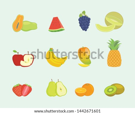 fruit set collection with various shape and various colors with modern flat style - vector