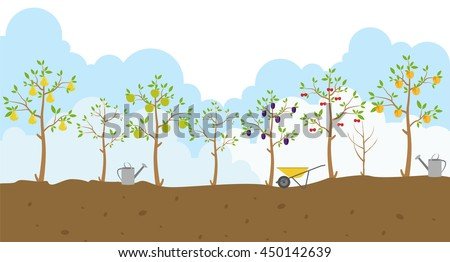 fruit trees garden icon set