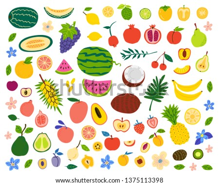 Fruits and berries hand drawn illustrations set. Exotic delicacy slices. Vegetarian food vector drawings pack. Natural dessert isolated cliparts. Juicy dessert, vitamin diet, organic meal