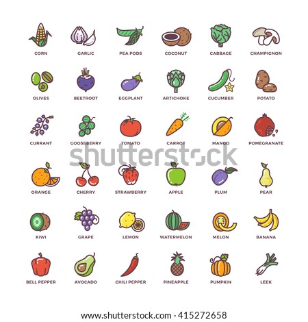 Fruits and vegetables line vector icons with flat elements. Vegetable food signs and fruit set illustration
