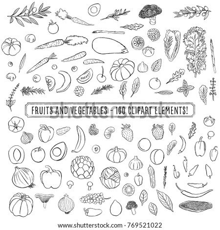 Fruits and Vegetables - Set of 100 hand drawn clipart fruits and vegetables