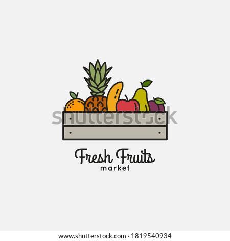 Fruits basket with organic fresh fruits on white background