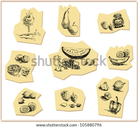 fruits collection, hand drawing