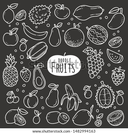 fruits doodle drawing