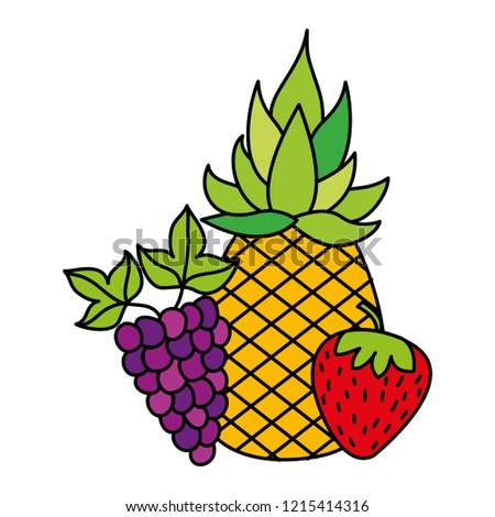 fruits fresh organic