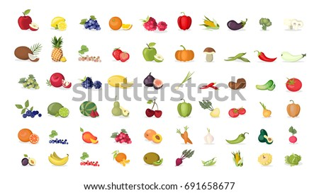 Fruits illustrations set on white background. Apples and bananas, coconuts and oranges and more.