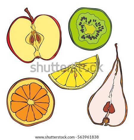 Fruits: orange, lemon, kiwi, apple and pear. Fruit slices. Isolated vector objects on white background.