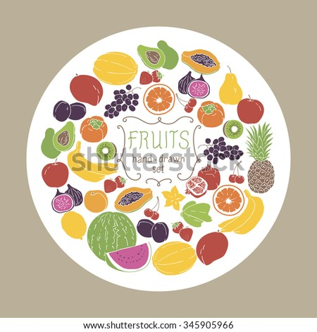 Fruits set on white circle background. Vector illustration.
