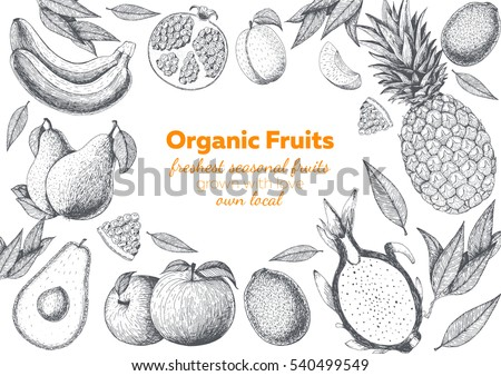 fruits top view frame farmers