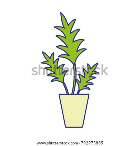 full color nature plant with
