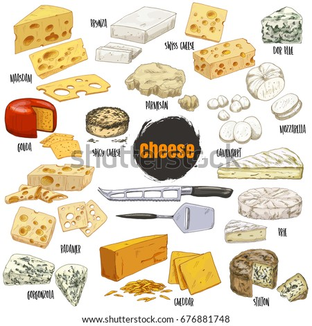 Full colour realistic sketch illustration of different types of cheese, vector collection for restaurant menu design.