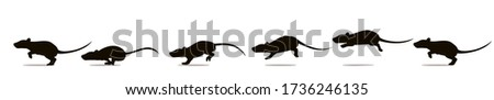Full cycle of rat or mouse running animation. Vector illustration, silhouettes. Foto stock ©