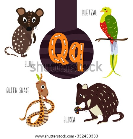 """What Are Some Animals With Names Beginning With The Letter """"q"""