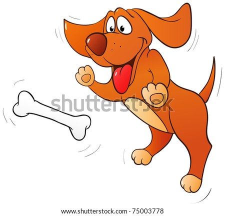 Fun jumping dog