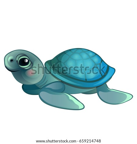 funny animated turtle gray and