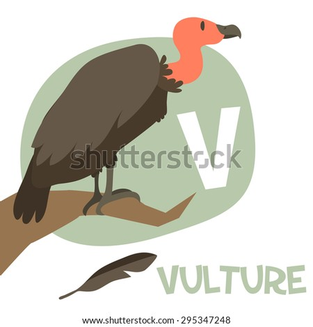 Funny cartoon animals vector alphabet letter for kids from A to Z. V is Vulture. Vector illustration