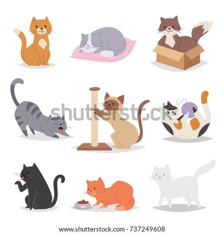 funny cartoon cats characters