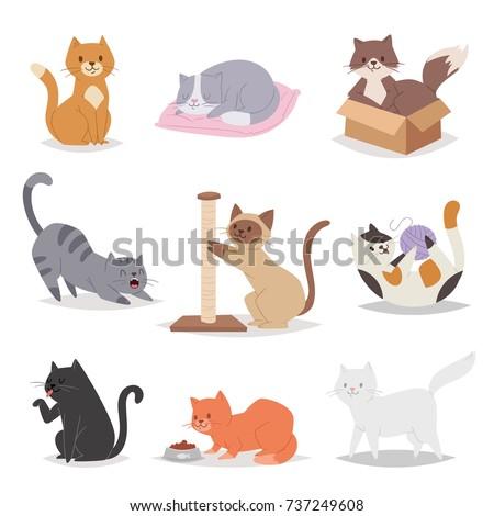 funny cartoon cats characters