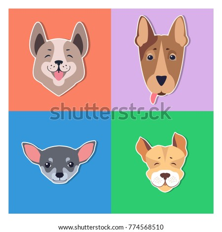 Funny cartoon puppies collection heads, flat vector isolated on color backgrounds. Lovely purebred pets illustration for animal friend concept, shop or veterinary clinic ad