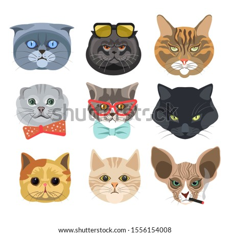 Funny cat faces or heads wearing glasses and bows or smoking cigarette isolated icons vector. Cartoon animal muzzles emoji or stickers, kitten breeds. Feline pets with emotions, happy or angry