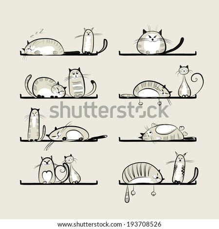 funny cats on shelves for your