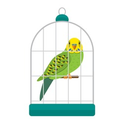 Funny character of green budgerigar in a cage. vector illustration flat in cartoon style isolation on a white background. The concept of a pet store.