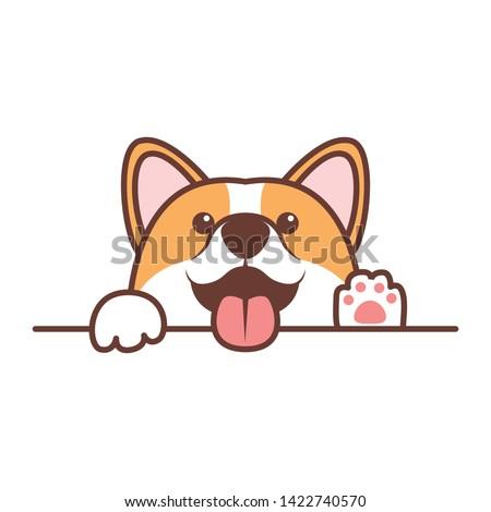 Funny corgi dog paws up over white wall, vector illustration