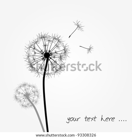 funny dandelion background as gift card