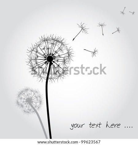 funny dandelion background as