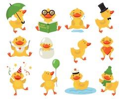 Funny duckling set. Cute yellow baby duck practicing different activities. Student or teacher bird reading book. Vector illustrations for cartoon character, bird, preschool education concept