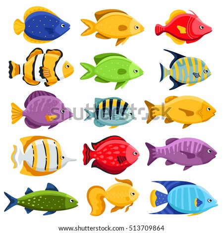 funny fish vector characters