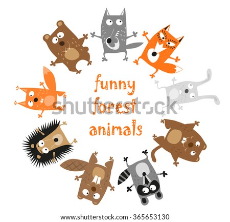 funny forest animals   bear